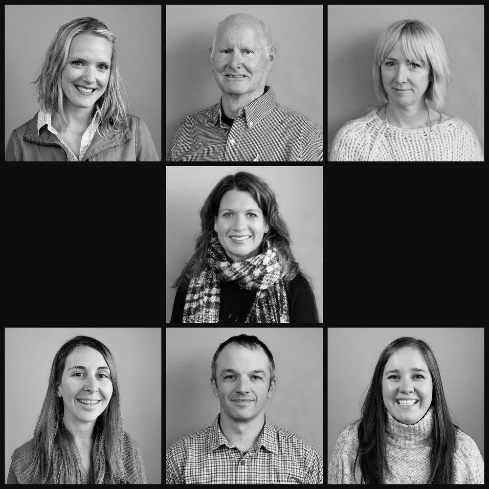 board of directors -