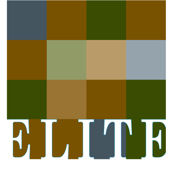 Elite Tile Services