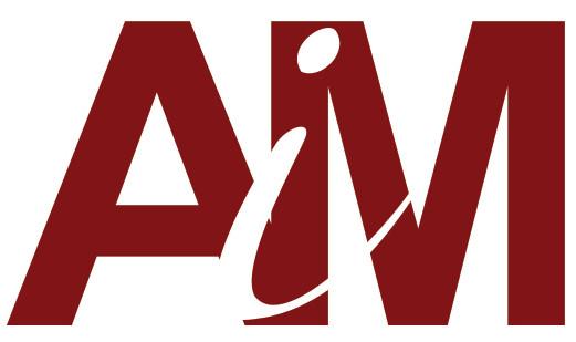 mini aim (1).jpg