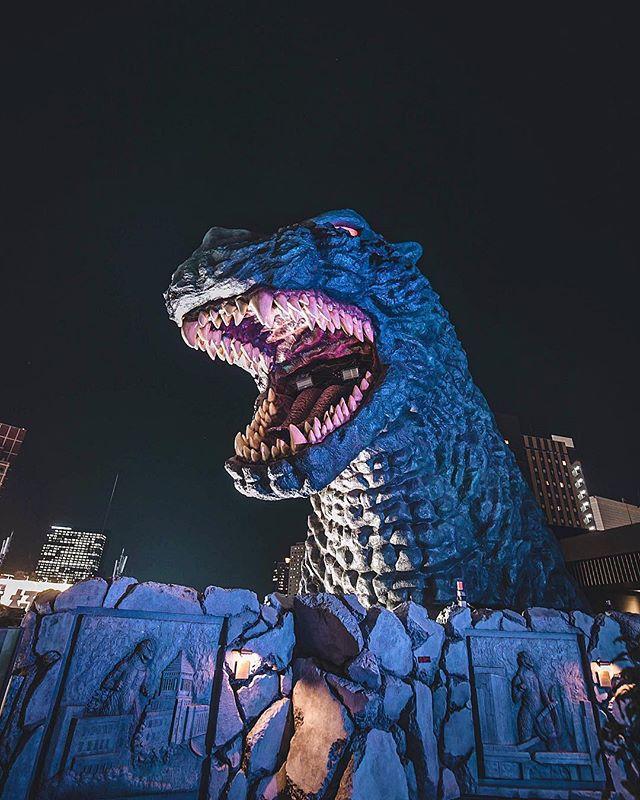 King of The Monsters! . . . . . .  #godzilla #kingofthemonsters #kaiju #gojira #godzillakingofthemonsters #monsterverse #monsters #toho #shingodzilla #kong #godzilla2014 #gamera #kongskullisland #ultraman #ゴジラ #godzilla2 #shmonsterarts #godzilla2016 #monster #pacificrim #bandai #shin #figure #goji #godzilla2017 #legendarygodzilla