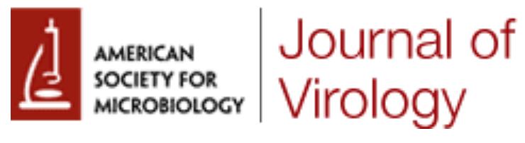 Картинки по запросу Journal of Virology