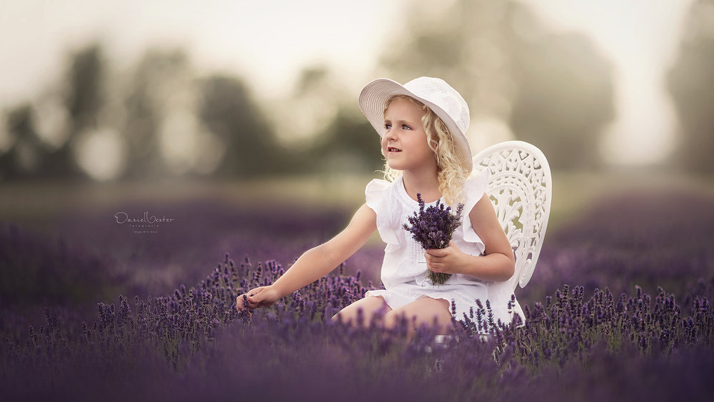 stock-photo-picking-lavender-218224665.jpg