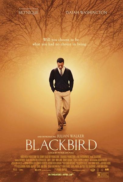 600_Blackbird v2.jpg