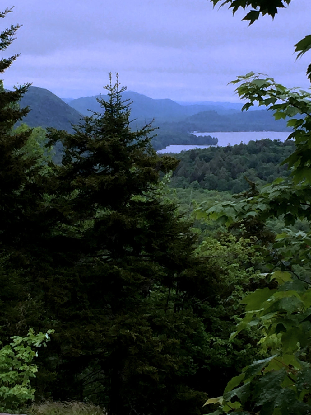 view from bald mtn.jpg