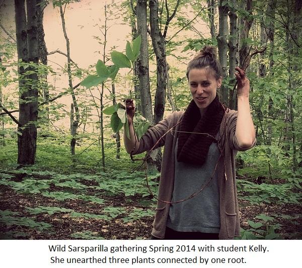 kelly with sarsparilla.jpg