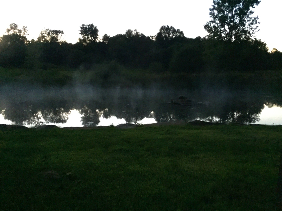 foggy pond.jpg