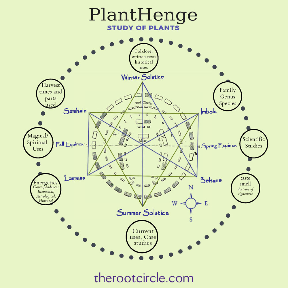 When we learn about plants from a circular instead of linear models we can understand them as dynamic, living, and evolutionary. Using a Plant Henge we place the plant at the center and follow the intersecting lines toward several aspects allowing us to hold multiple perspectives. Learn more    HERE