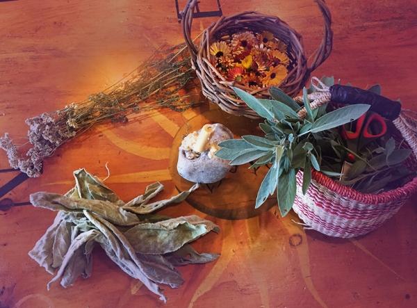 table of herbs.jpg