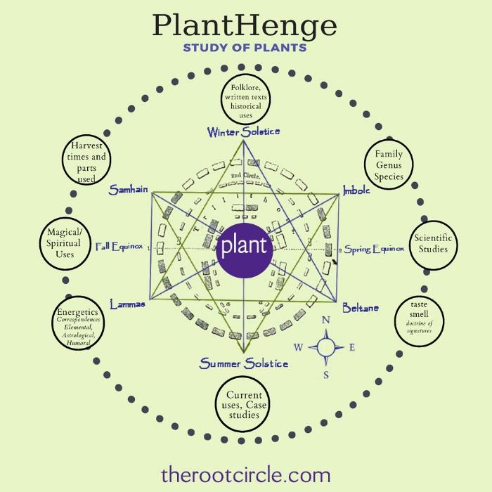 cropped planthenge.jpg