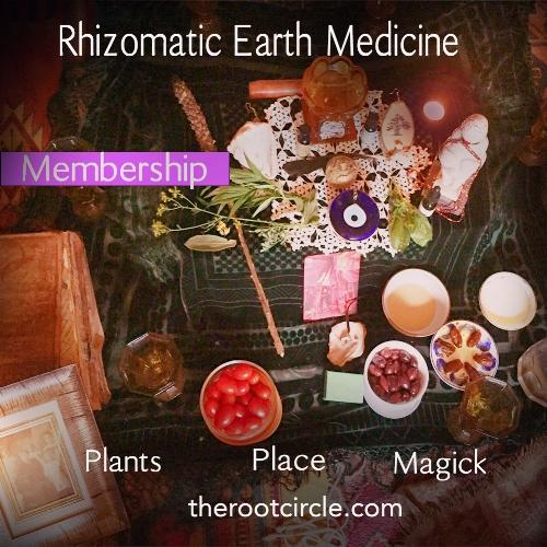 resonant earth medicine graphic.jpg