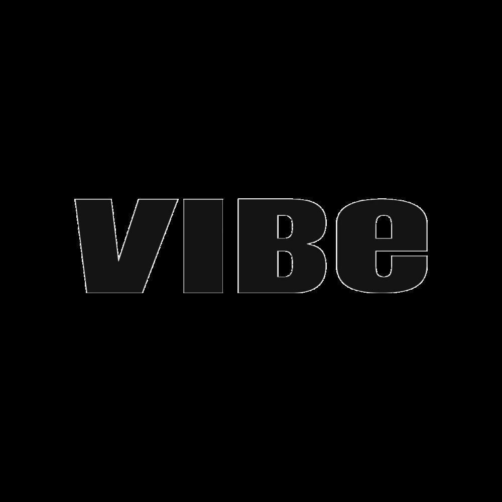 SKXT-Vibe-Logo.png