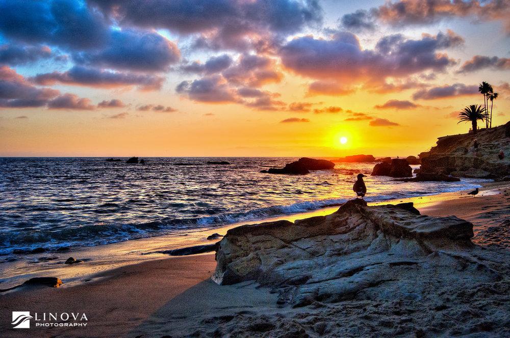 020-Laguna Beach, CA.jpg