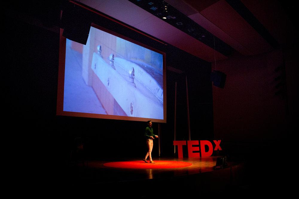 048_TedX_2017.jpg