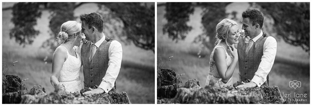 Gregynog_hall-wedding-summer-marquee-kerry-leri-lane-photography-mid-wales-48