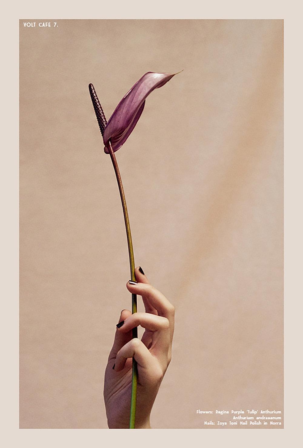 035-icon-artist-management-Kristin-Vicari-Beauty-Volt.jpg