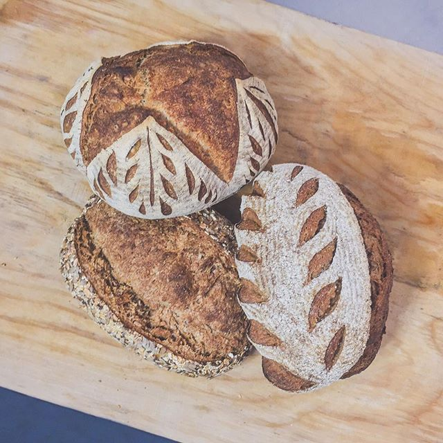 Our classic sourdough trio: Pain au Levain, Sourdough Rye, and Country Multigrain. Made fresh every Tuesday, Friday, & Sunday, available fresh at our shop, Abundance, Hart's, & Loris! Which one is your go-to loaf? . . . #sourdough #sourdoughbread #sourdoughbakery #artisanbread #artisanbakery #rochesterny #naturallyleavened #naturallyfermented #fermented #wholegrain #wholewheat #bread #brot #traditionalfood #organic #local #westernny #585 #rochestereats #knowyourbaker #smallworldfood  @abundancefoodcoop  @hartslocalgrocers  @lorisnaturalfoods