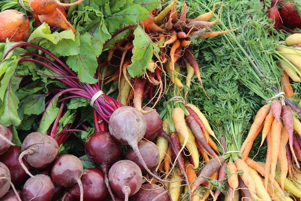кореноплодни: червено цвекло, ряпа и моркови