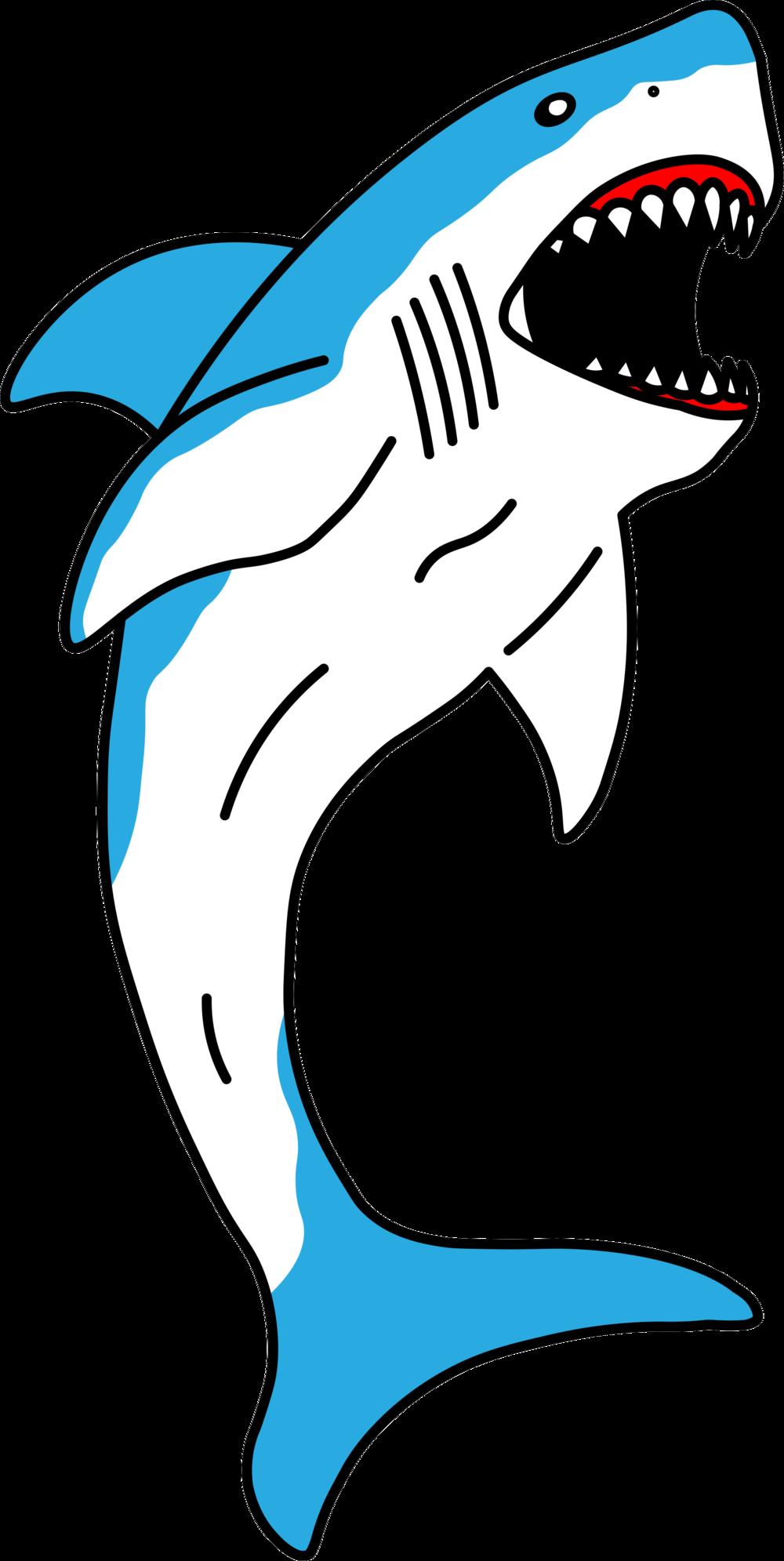 shark color copy.png