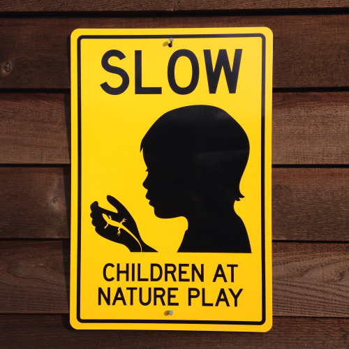 Nature Play Sign