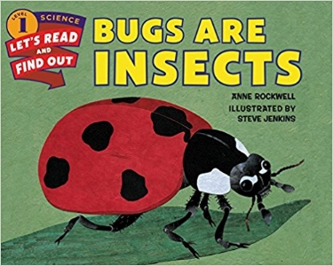 Bugs are Insects.jpg