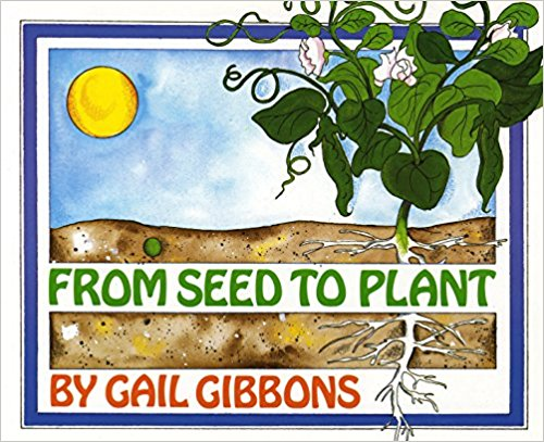 From Seed To Plant.jpg