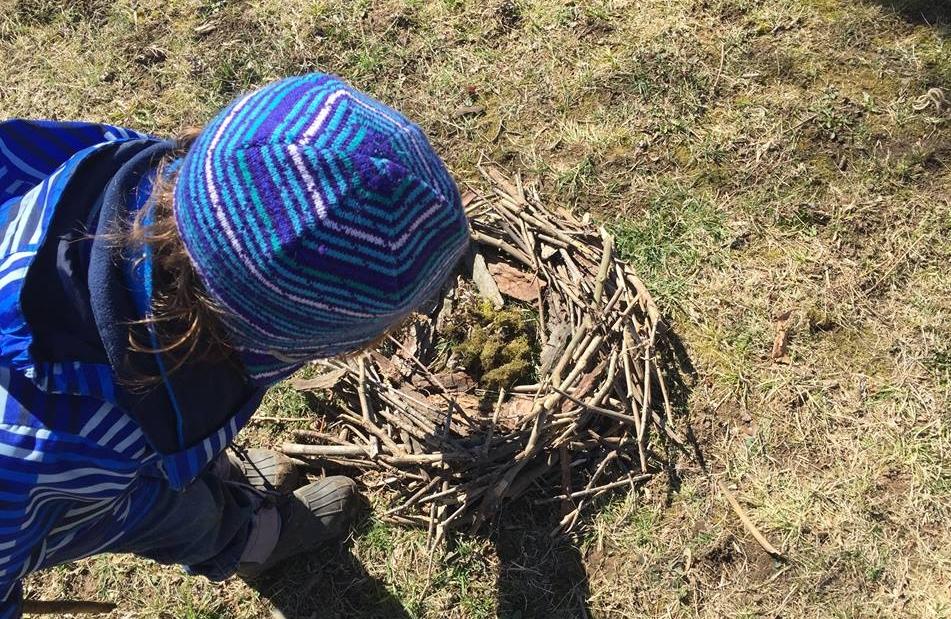 Nest Building Challenge from the Wonderkin NEST Box