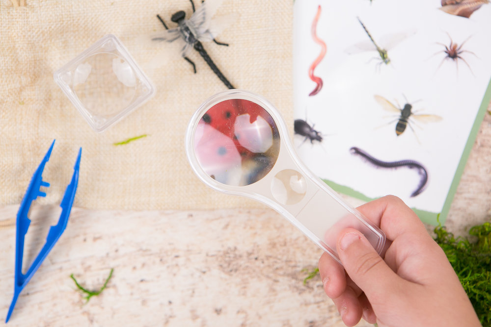 Insect Detective Kit from the Wonderkin INSECT Box