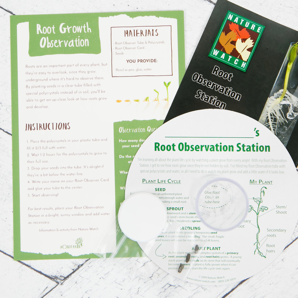 Nature-Watch Root Growth Observation Kit -- From the Wonderkin BOTANY Box -- July 2018