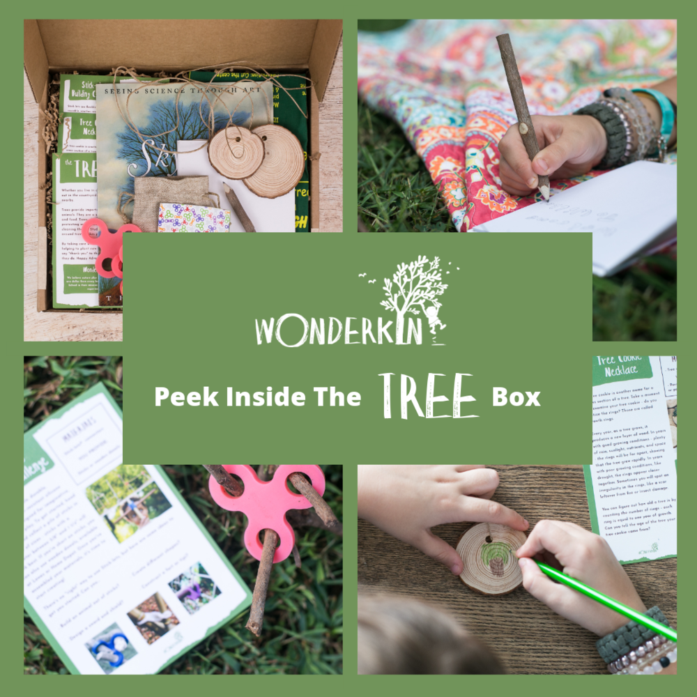 Peek inside the Wonderkin Tree Box. Our monthly subscription boxes are designed to support early childhood development by getting kids outdoors and connected to nature.