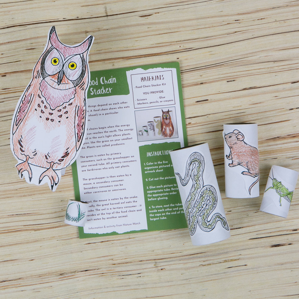 Food Chain Stacker featured in the Wonderkin Owl Box