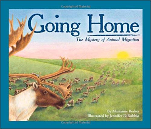 Going Home- The Mystery of Animal Migration