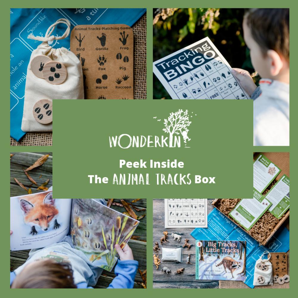 Peek inside the Wonderkin Animal Tracks Box