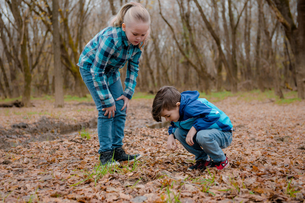 Wonderkin | Delivering nature-based play and learning