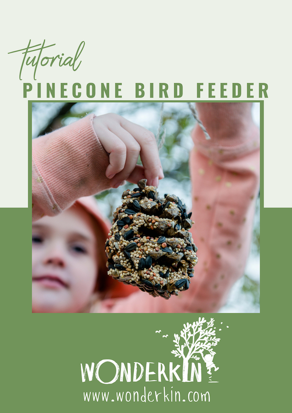 Pinecone Bird Feeder Tutorial | Wonderkin