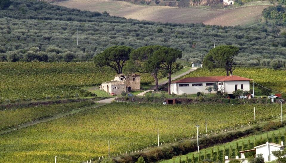 Casa d'Angelo in Basilicata