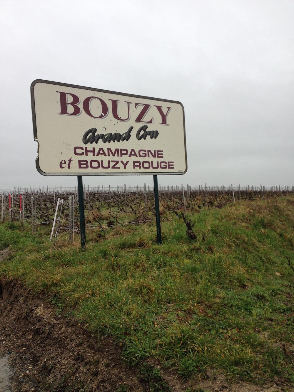 Bouzy-Champagne.jpg