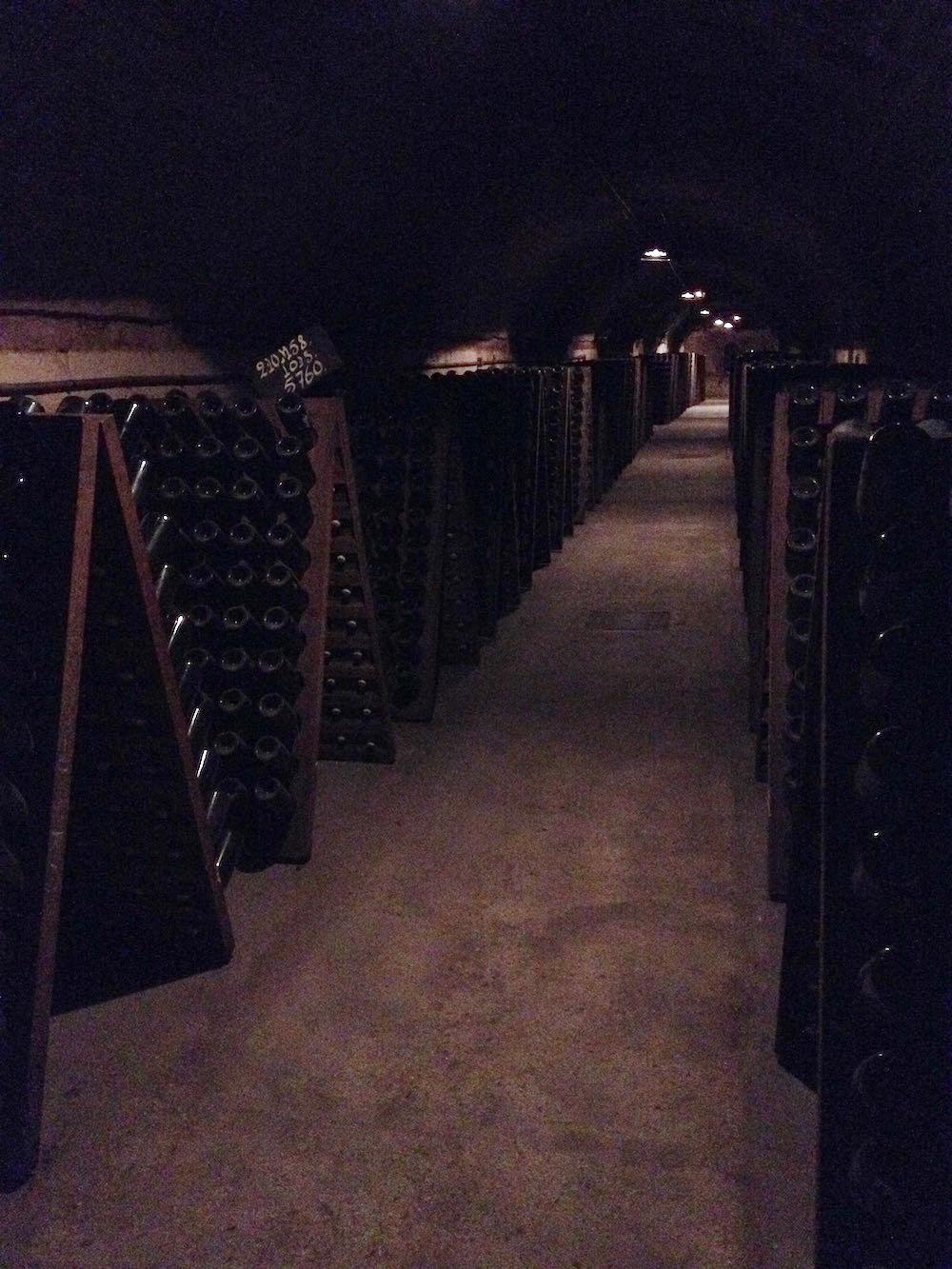 Moet Cellars.jpg