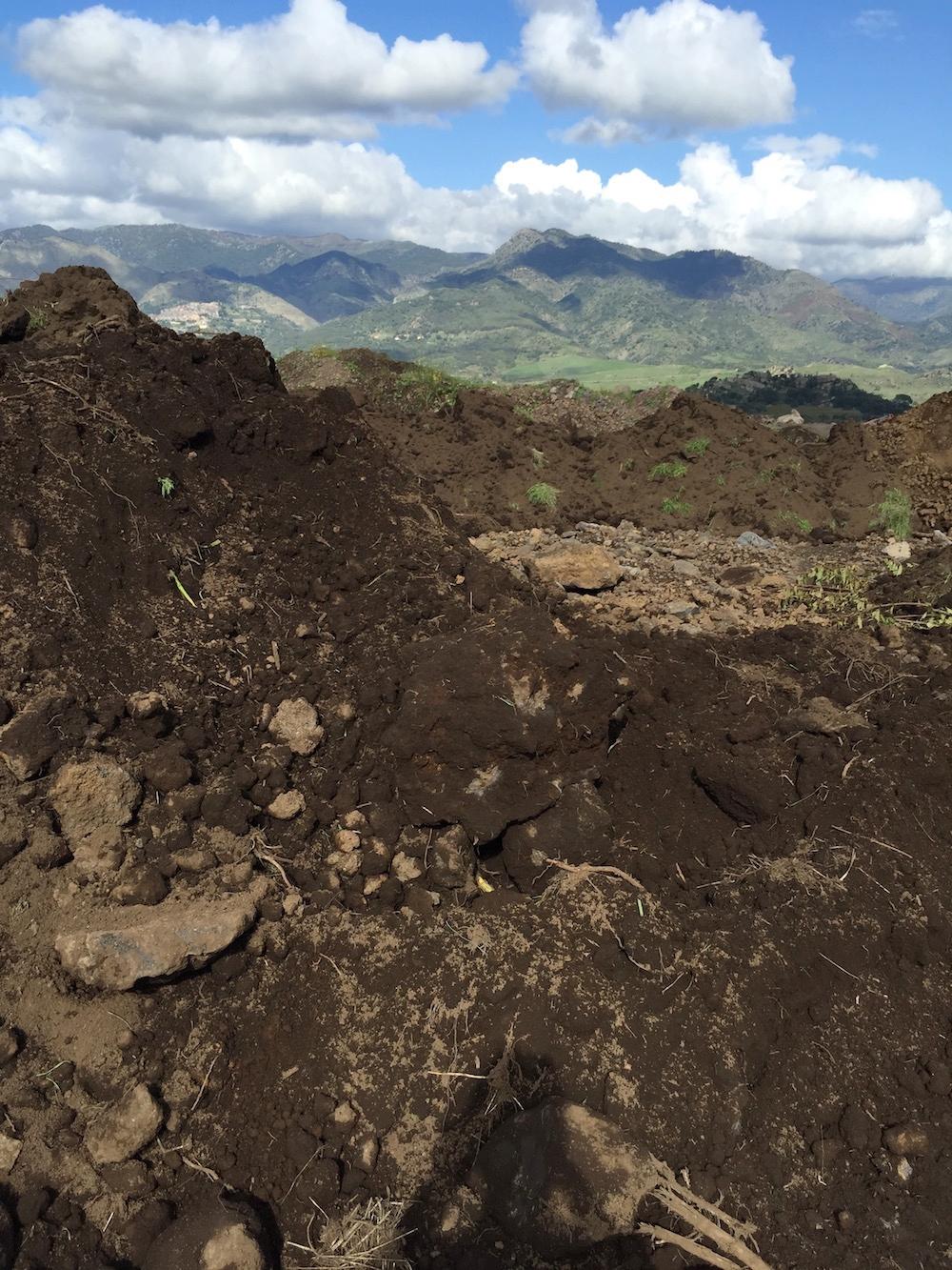 etna wine soils.jpg