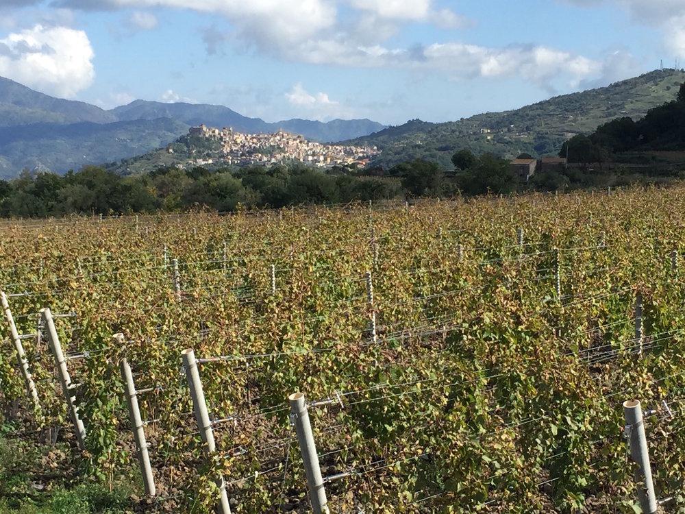 etna castiglione di sicilia.jpg