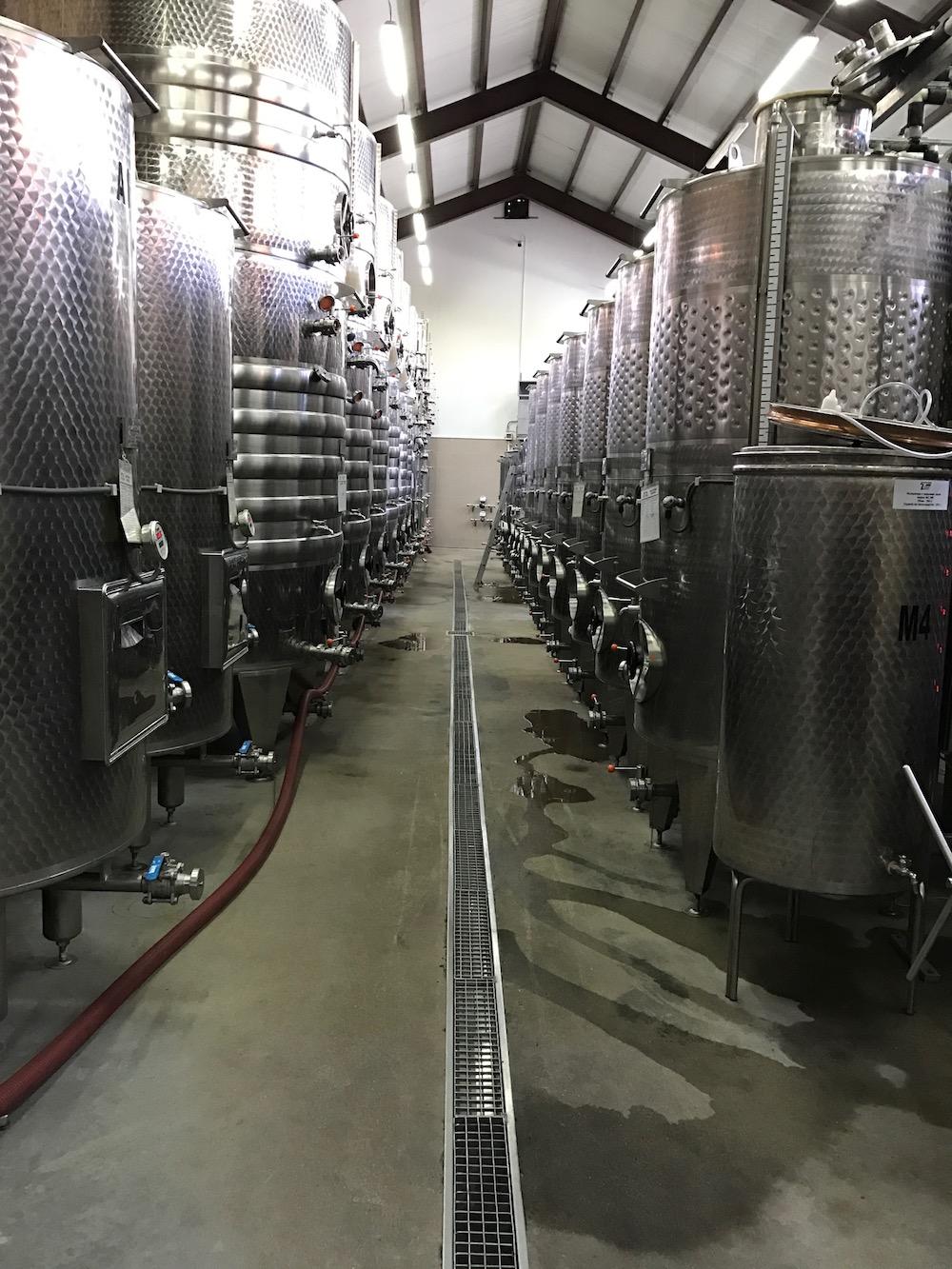 The cellar at Villa Yustina