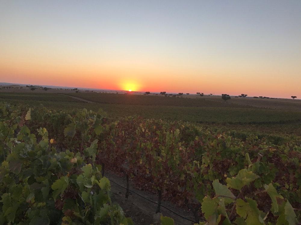 Sunset at Adega Mayor in Campo Major
