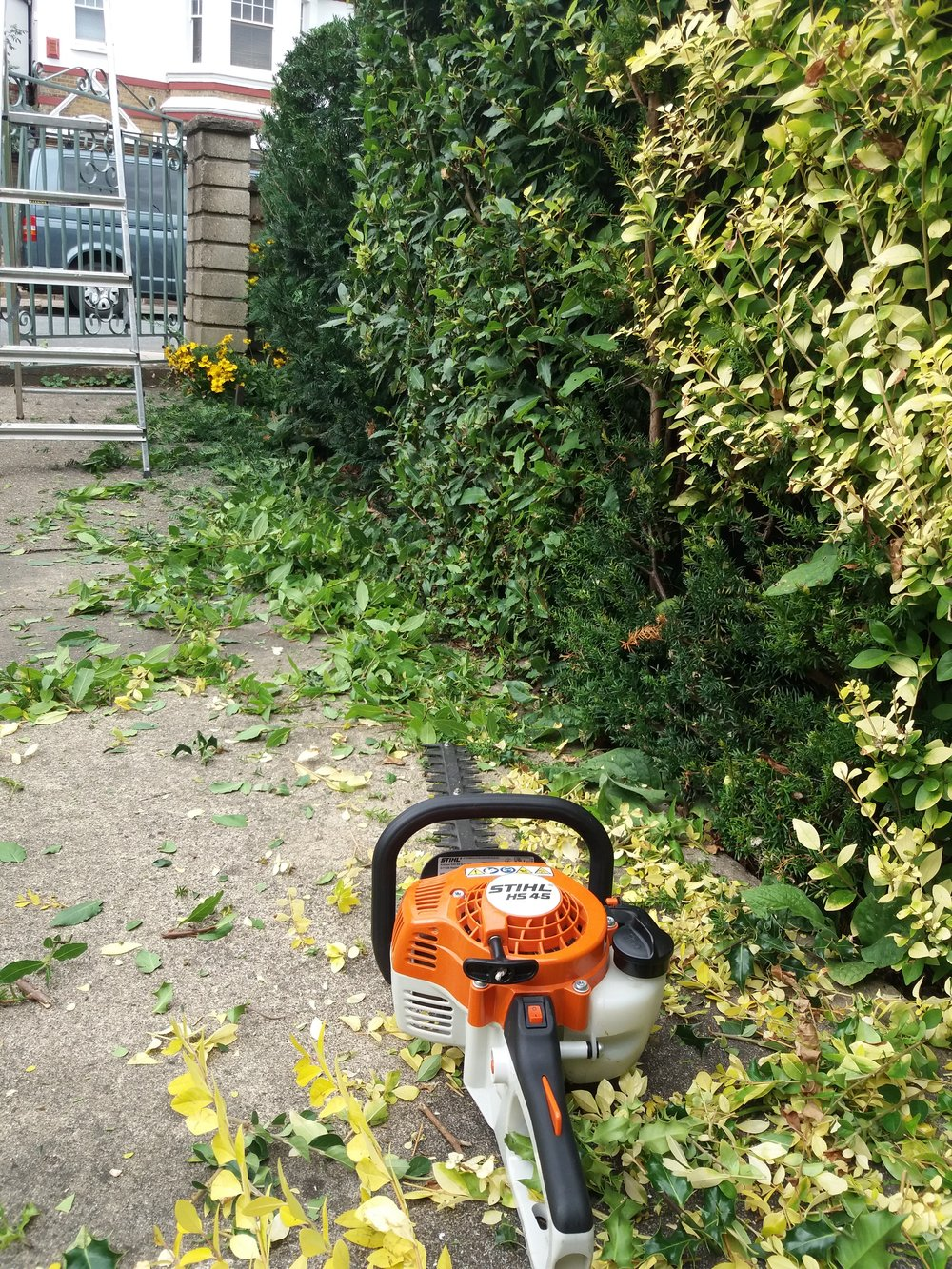 Hedge cutting, August 2018