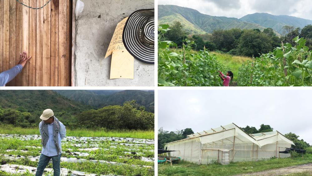 PASO Farm 2.png