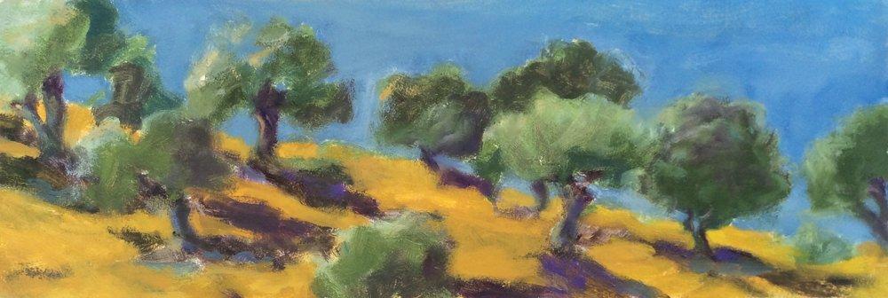 Summer Olives