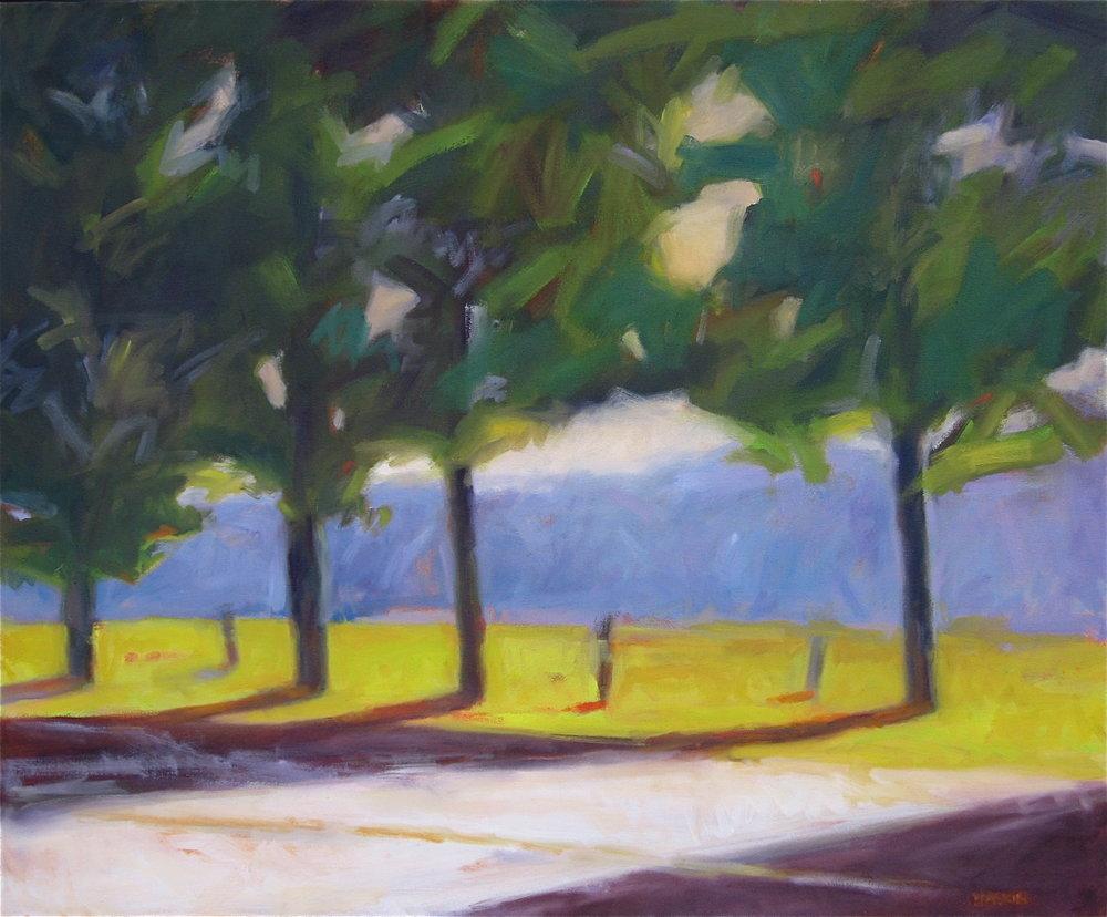 Erwin Road