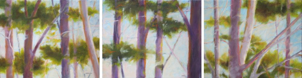 Tree Study (triptych)