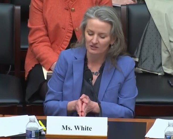 Ruth White addresses the House Financial Services Subcommittee April 2018