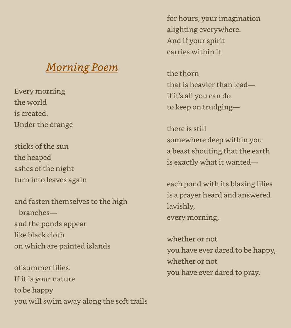 Morning Poem by Mary Oliver