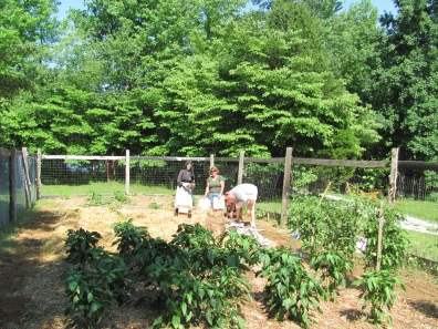 gardeners2011blog