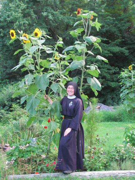 nunwithsunflowerblog2015.jpg